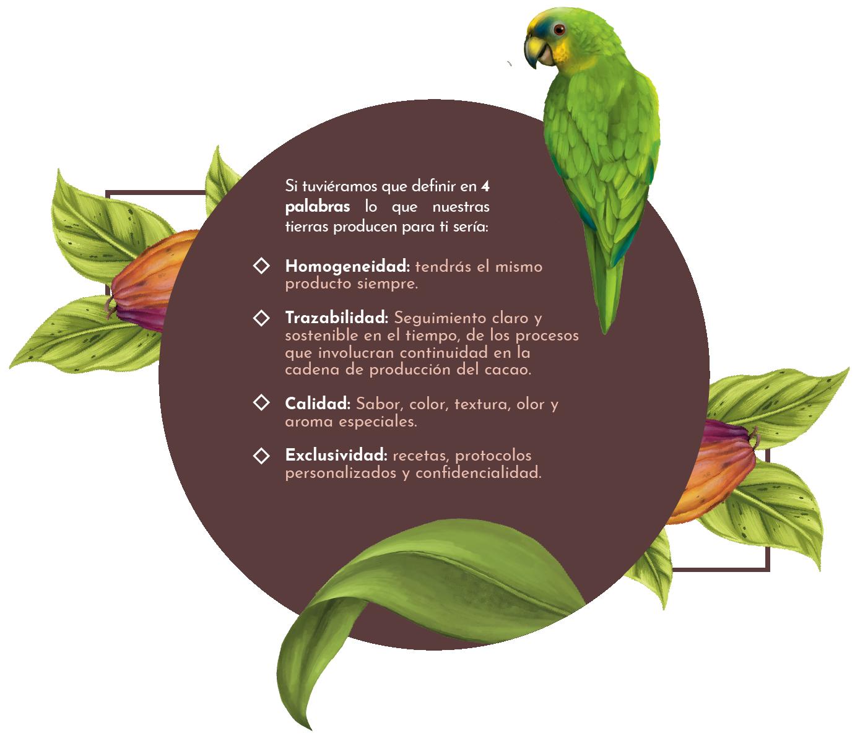 Beneficios UMAU cacao