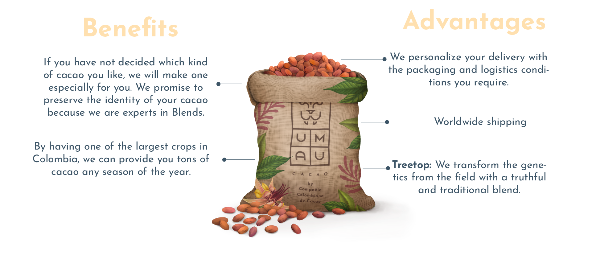 Benefits of UMAU Cacao